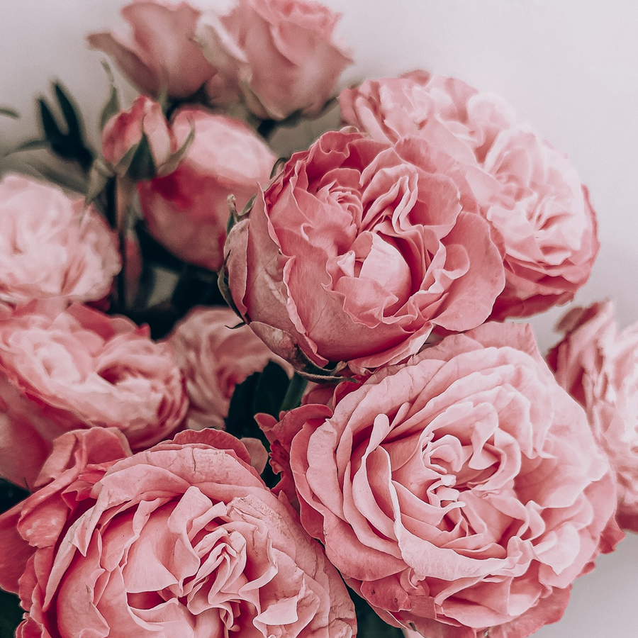Ingridos gėlės